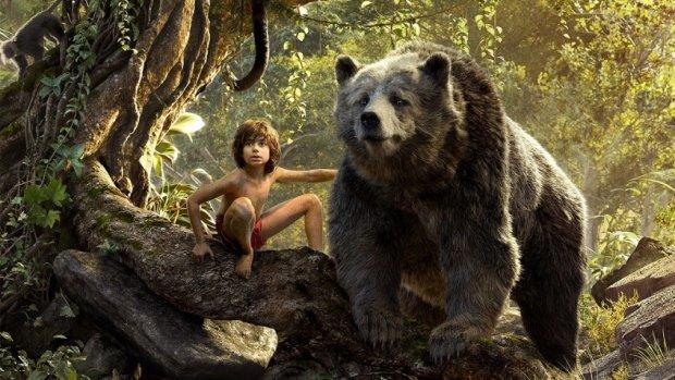 3-річний Мауглі вирішив прогулятися лісом і загубився, на щастя, зустрівся Балу, який врятував дитину від холоду. Дива трапляються