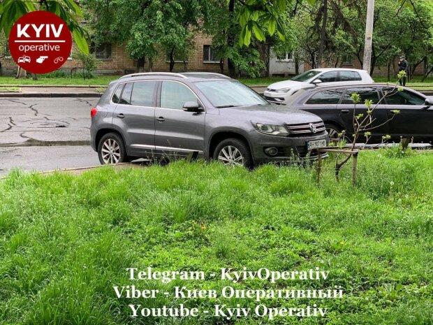 """У Києві """"олень"""" парковки довів містян до білого калення: """"Ні штрафи, ні евакуація..."""""""