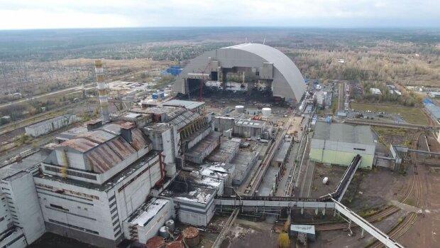 У Чорнобильській зоні помічені величезні коні: яскравий мурал прикрасив будівлю ЧАЕС