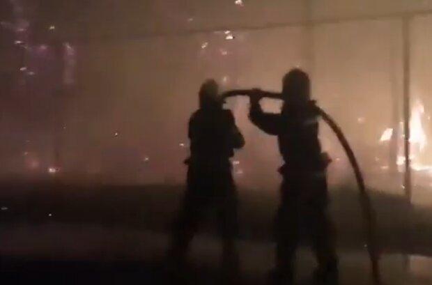 Пожежі на Луганщині, фото: кадр з відео