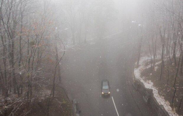 Туман, фото: Униан