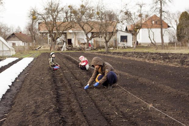 Астрологи склали місячний календар для садіння городини: які дні обрати для найкращого врожаю