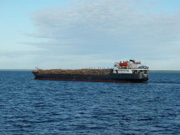 Сухогруз протаранил частный катер, люди тонули под смех российских моряков: позорное видео