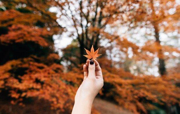 Погода в Івано-Франківську 3 листопада: осінь розгуляється на повну силу, про прогулянки краще забути
