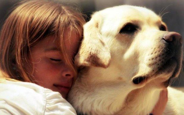 Сообразительный пес спас жизнь маленькой украинке