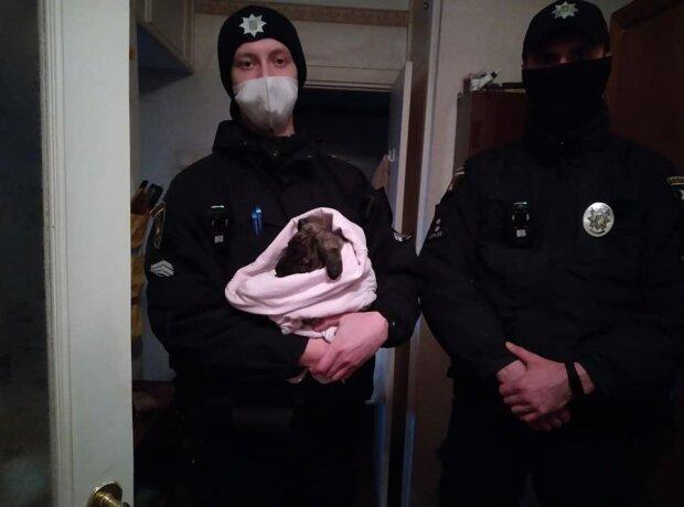 Путрульні спасли щенка, фото Национальной полиции