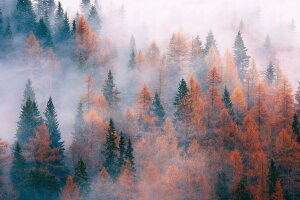 Погода в Украине, фото: RU.BEST-WALLPAPER.NET