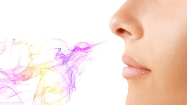 Б'є в ніс: створено електричний імплантат, який відновлює нюх