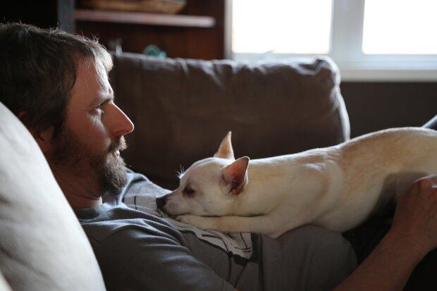 мужчина с собакой, фото pxhere