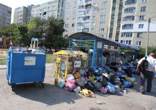"""Українці заплатять, як за рідну маму: кому """"світять"""" посилені штрафи за сміття"""