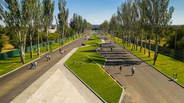 """Голый киевлянин """"под кайфом"""" потрусил причандалами в парке, ловили с полицией: """"Дети, закройте глаза"""""""