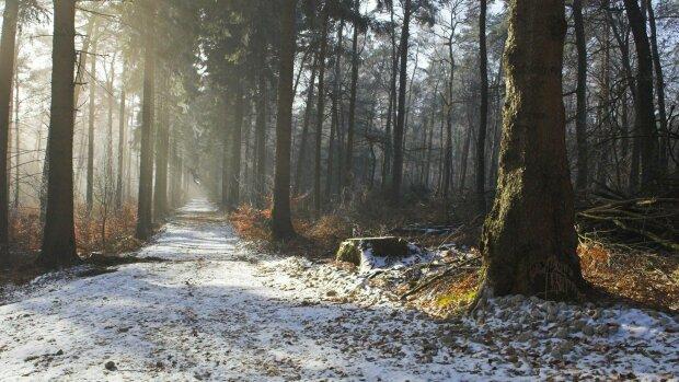 Погода в Запорожье: лютая стихия посадит горожан под замок 25 ноября