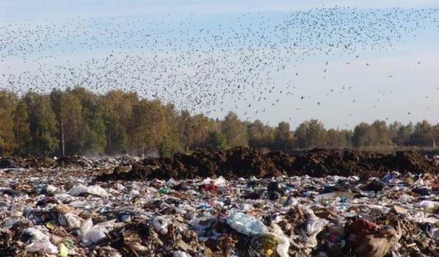 Європа допоможе Україні розібратись зі сміттям