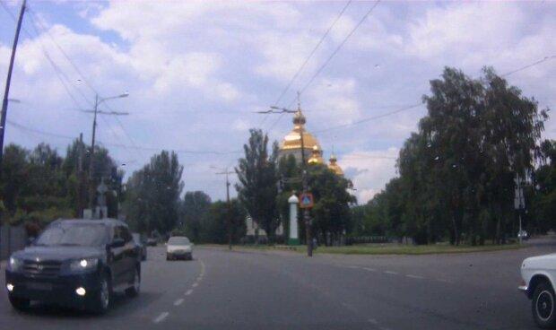 """Под Днепром живодеры за баранкой сбили малышку и оставили погибать: """"Родители, найдитесь!"""""""