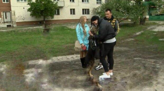 В Киеве потерянный пес вернулся к хозяйке через 11 лет - узнали друг друга с первой секунды