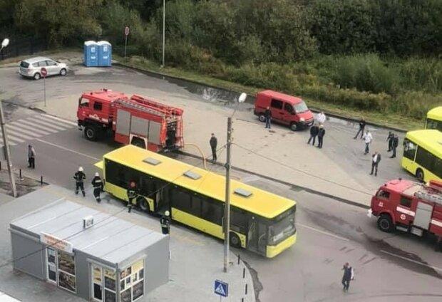 Во Львове автобус с людьми превратился в крематорий - вспыхнул на ходу, как бенгальские огни