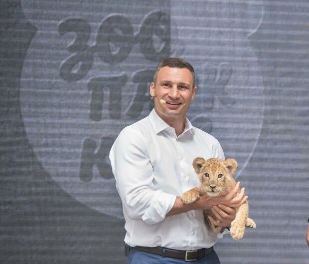 """Кличко показал кормление хищников в столичном зоопарке: """"Вынуждены сами добывать себе пищу"""""""
