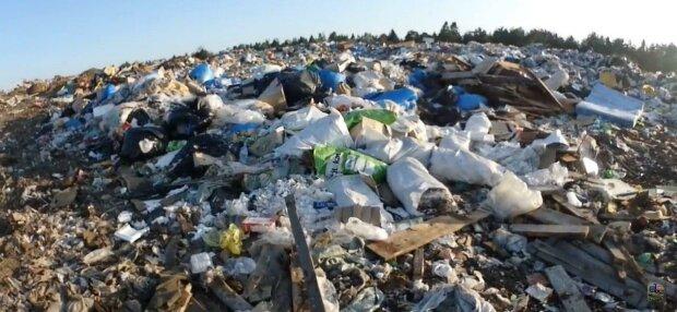 Запоріжці ризикують викинути мільйони на смітник