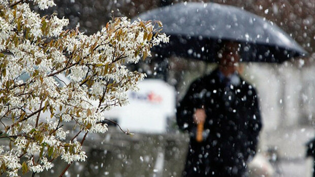 Погода в Украине, фото: SvidokInfo