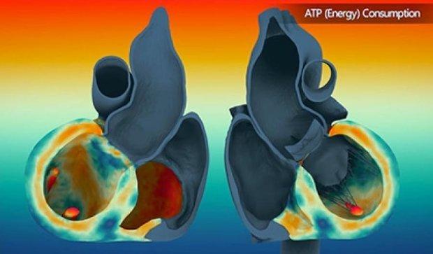 Ученые представили видеотур по бъющемуся сердцу (видео)
