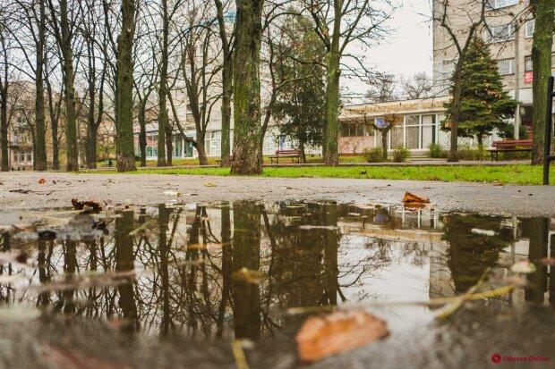 Пощастило: синоптики вказали на особливість погоди у Одесі 28 грудня