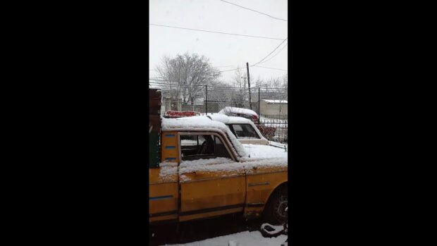 Снігопад в Україні 16 квітня, скріншот: Telegram