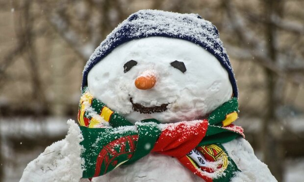 Запорожці розсмішили креативом всю Україну: яка зима, такий і сніговик