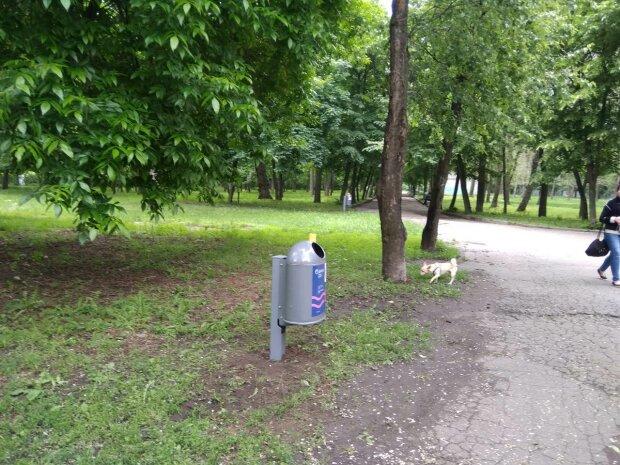 """Днепровские вандалы устроили переполох в одном из парков города — """"Даже стыдно смотреть"""""""