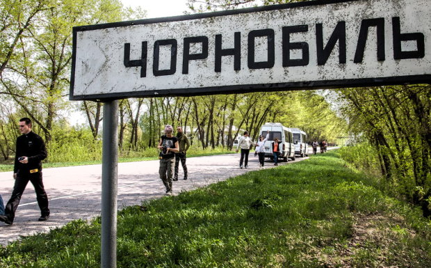"""Чорнобиль """"ожив"""" за десятиліття після вибуху: у зоні відчуження почали коїтися дивні речі, фото"""