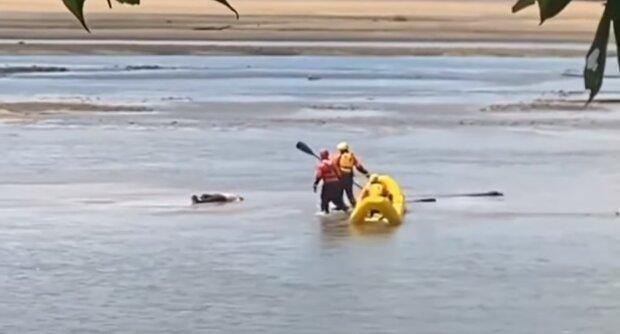 Люди спасают мужчину, скриншот: Youtube
