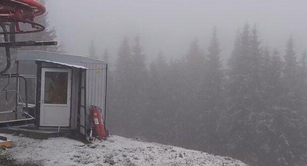 Сніг у Карпатах, скріншот із відео