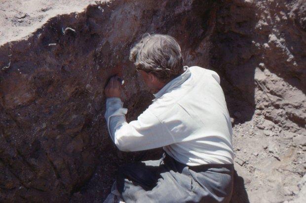Под Ровно нашли загадочное захоронение: тысячи костей погребли в проклятом месте
