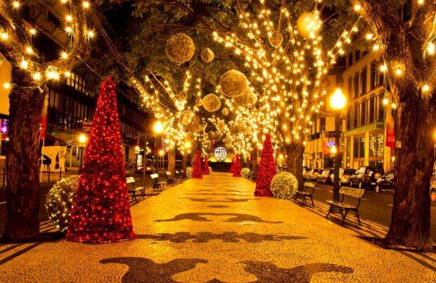 Різдвяна казка на ВДНГ: українці зможуть відвідати місто ельфів і виконати будь-яке бажання