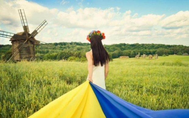 Google привітав Україну з Днем Незалежності, дізнайтесь як