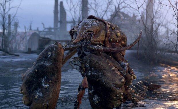 У Бельгії раки-мутанти захопили кладовище, фото: maximum.com