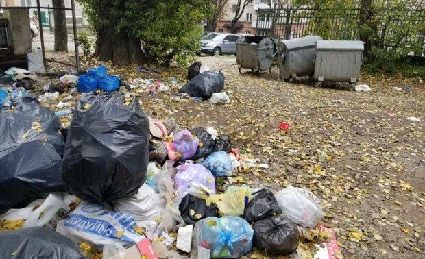 Свалка в Тернополе, фото: социальные сети