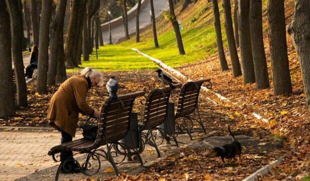Кияни, змініть капелюхи на парасольки: яку погоду обіцяють синоптики 9 листопада