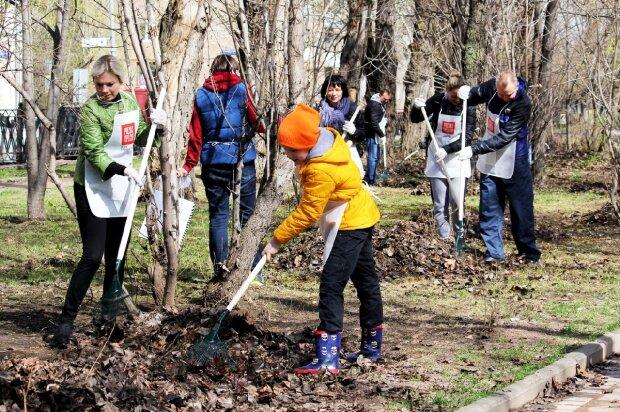 Украинцы нашли способ избавиться от тонн мусора: удивительный лайфхак получил бешеную популярность