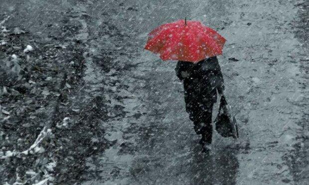 Стихия искупает Харьков под ледяным душем, не стоит и мечтать о солнце 14 декабря
