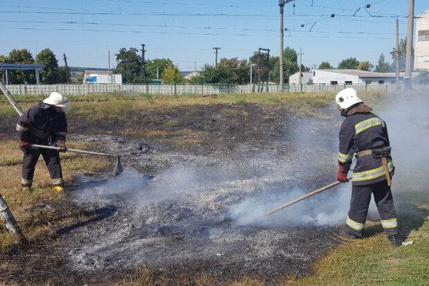 Киевщина в огне: спасатели срочно обратились к украинцам, творим беду своими руками