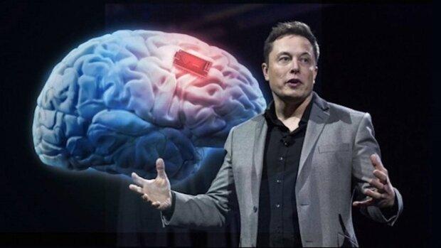 Илон Маск сделает из людей настоящих киборгов с помощью чипа для мозга Neuralink