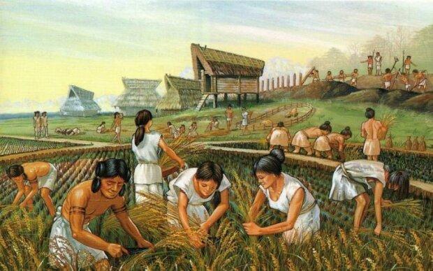 Трипольская культура: кем были и как жили наши дальние предки
