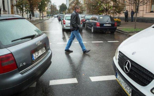 Растаможка авто на еврономерах: все, что необходимо знать водителю