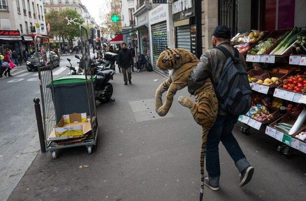 Француза из-за попрошайки оштрафовали на 2676 гривен: бывает и такое