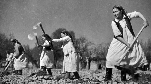 радянські жінки, фото з вільних джерел