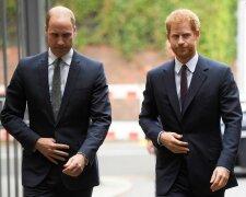 Принци Вільям та Гаррі, фото: ukr.media