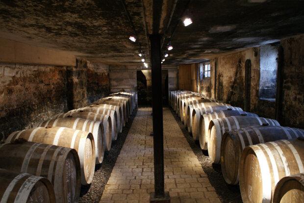 В Україні зникнуть свій коньяк, шампанське та портвейн: деталі ініціативи Зеленського