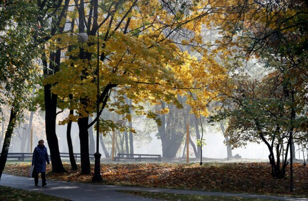 Погода на 23 вересня: аномальна температура закриє українців вдома