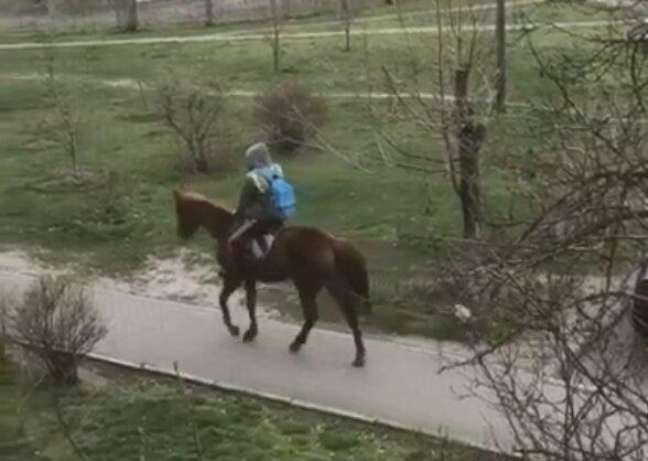 Киянин верхи на коні підняв карантинний настрій, скрін з відео