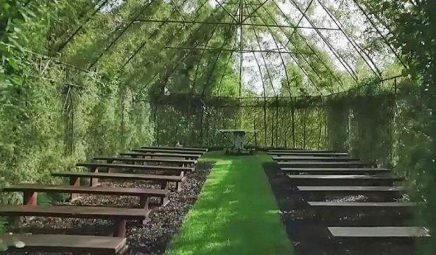 Новозеландец вырастил церковь из деревьев за четыре года (фото)